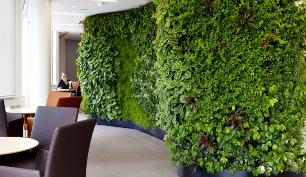 BRE to test benefits of biophilic design