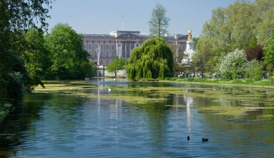 Royal Parks extends security deal with Magenta