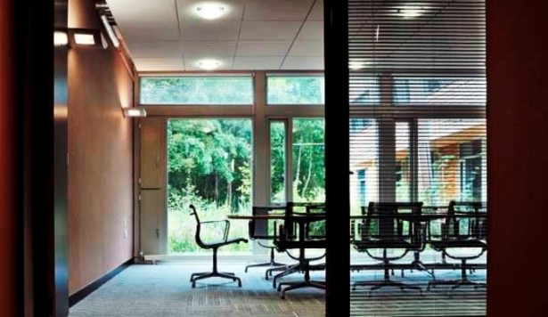 Biophilic design: sorting the facts from the myths