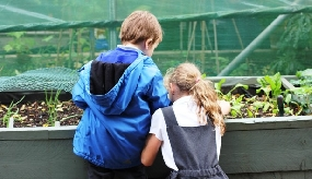 ISS partners with Innocent on school gardening initiative
